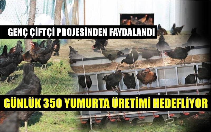 GENÇ ÇİFTÇİNİN GÜNLÜK HEDEFİ 350 YUMURTA