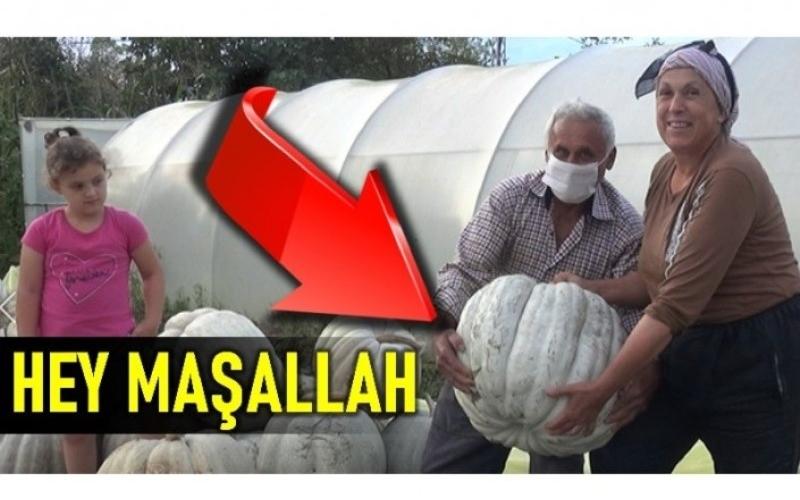 GÖRENLER HEY MAŞALLLAH DİYOR